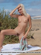 Small tits blonde with hairy pussy posing naked at the beach